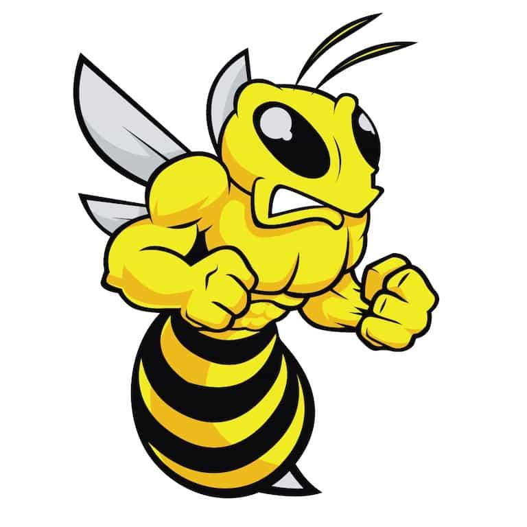 L'épigénétique chez les abeilles - Santé d'Acier