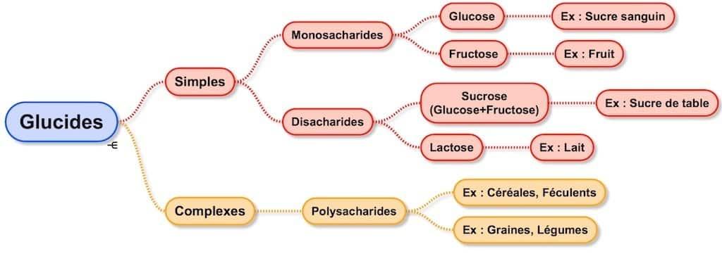 Tous les types de sucre