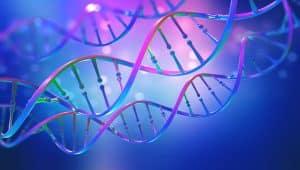 L'Epigénétique : Comment vos Gènes peuvent Changer votre Vie...et votre poids ?