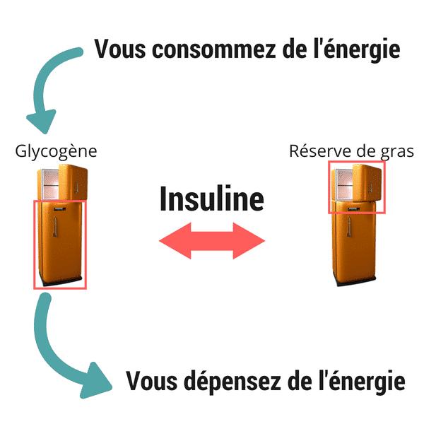 Mécanisme-de-prise-de-gras-Santé-dAcier