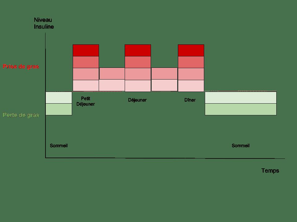 Sécrétion-dinsuline-avec-5-repas-par-jour-soit-8-heures-de-jeûne-9