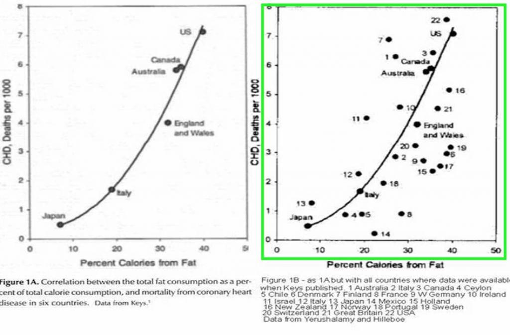 Le compte rendu de l'étude d'Ancel Keys sur les graisses - Santé d'Acier