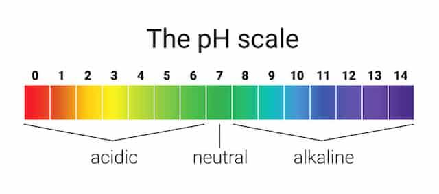 Le pH de l'acide acétique du vinaigre de cidre peut-il vous faire maigrir rapidement - sante dacier