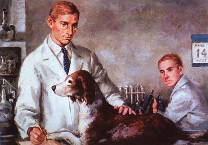 Experience d'oscar Minkowski sur le pancréas du chien - sante dacier